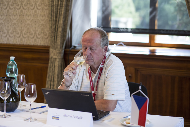 Martin Pastyřík